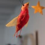 Oiseau orange